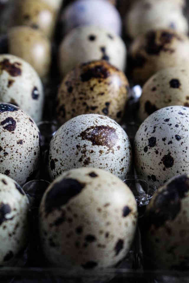 Quail Eggs {Katie at the Kitchen Door}